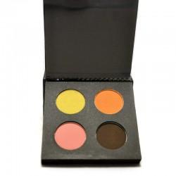 palette de maquillage professionnel